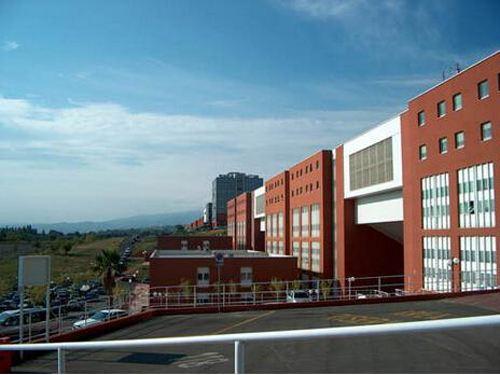 意大利卡拉布里亚美术学院